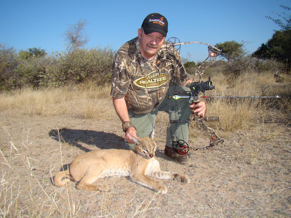 Bow hunting Caracal in South Africa at Bushmen Safaris