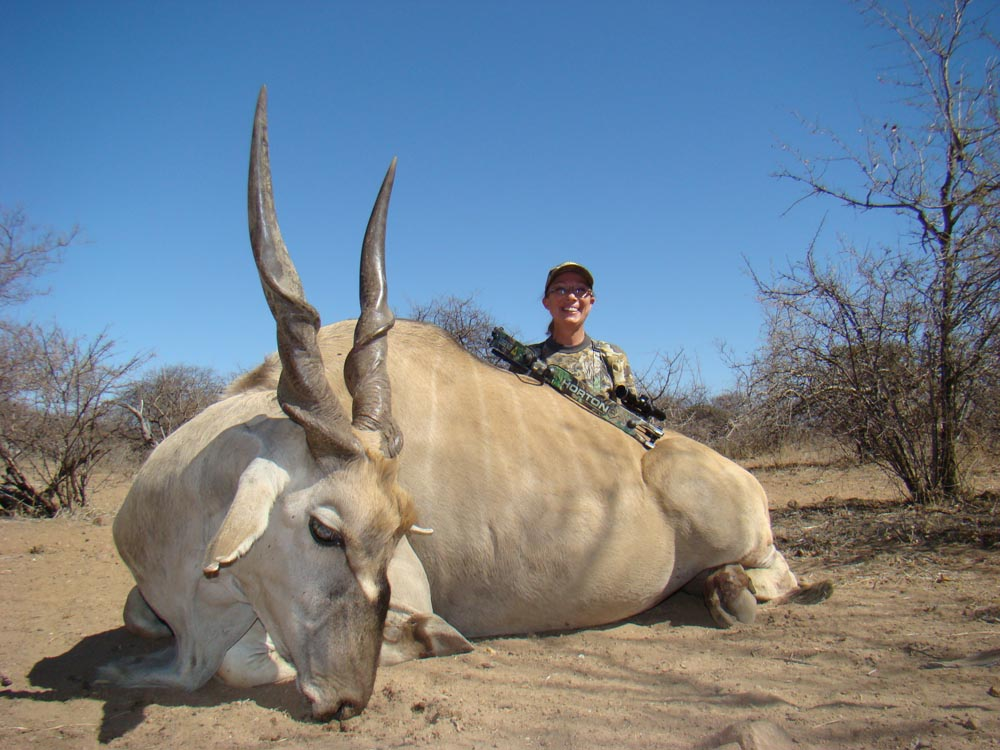 Bow hunting Eland in South Africa at Bushmen Safaris